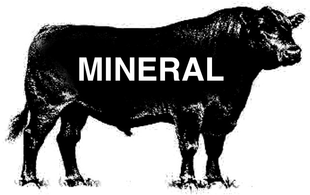 mineral-001.jpg