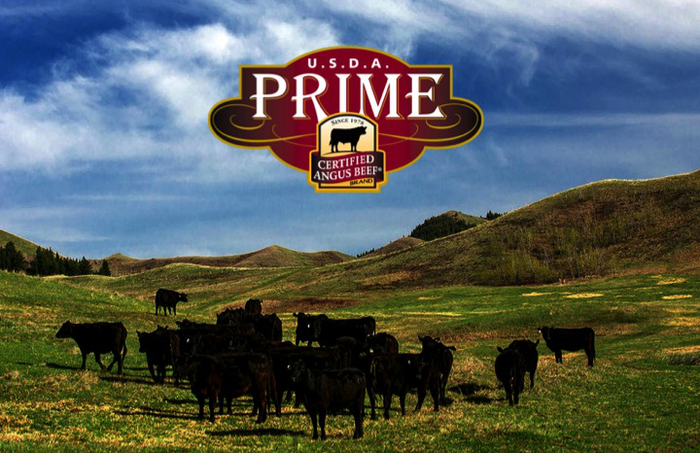prime-001.jpg