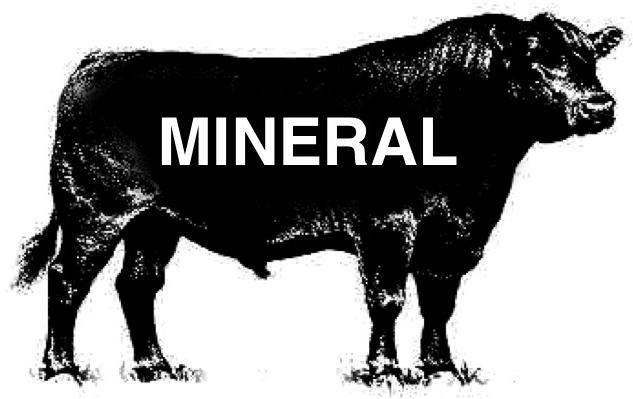 http://latelier1959.com/news/mineral-001.jpg