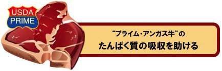 http://latelier1959.com/news/pa-001.jpg
